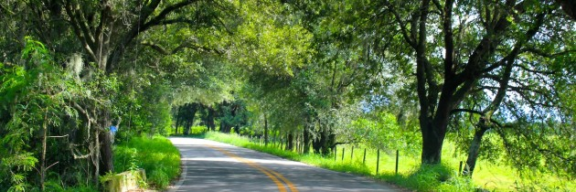 Weekend in Tampa Bay: Monthly Family Fun Event at Water Buffalo Italian Cheese Farm!