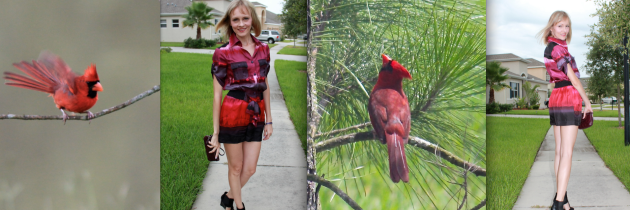 Inspiration from Nature: Red Cardinal vs Red Romper.
