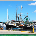 Fresh Seafood & Greek Village in Tarpon Springs