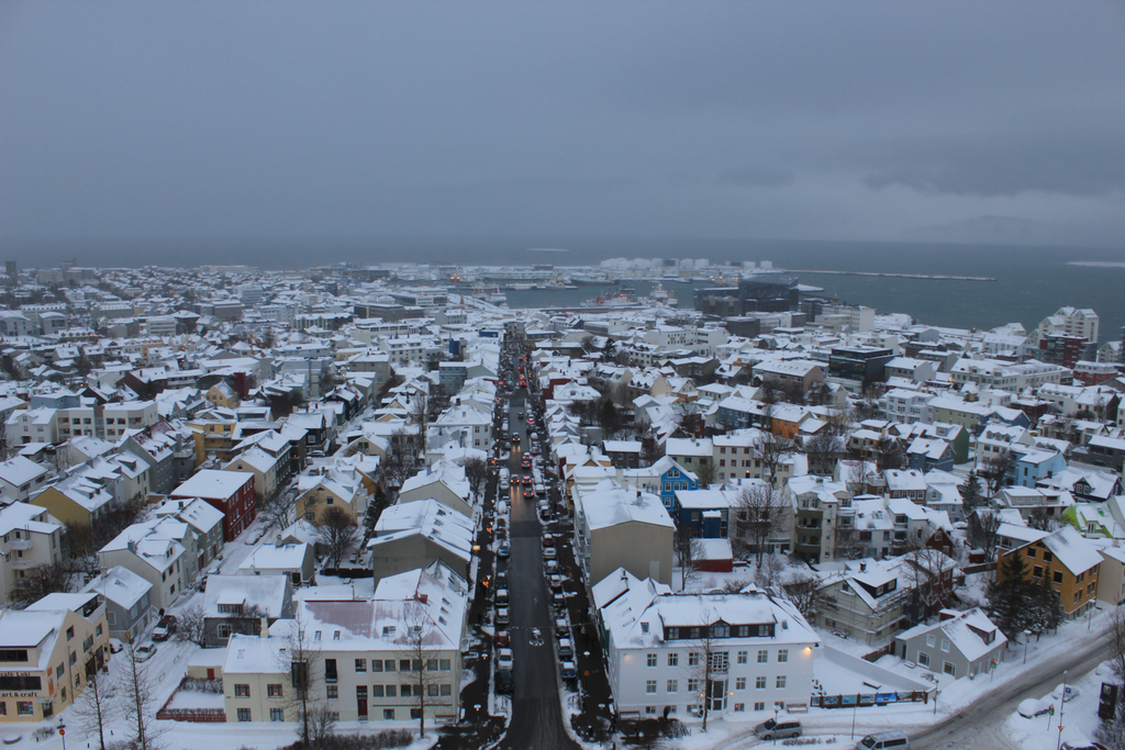 View from the Hallgrimskirkja onto the city.