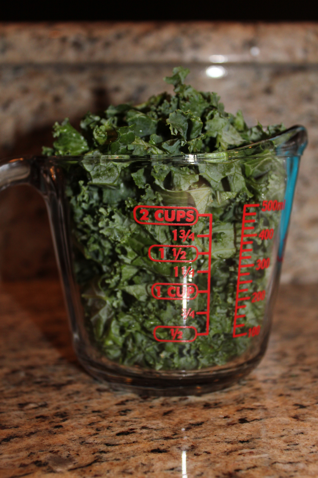 Wash kale, remove stems, cut into medium pieces.