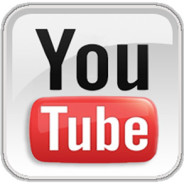 What is the Secret of the Popularity of Viral Videos?